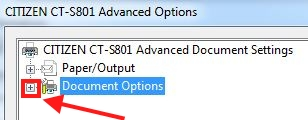 document_options.JPG